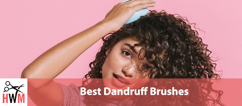 10 Best Anti-Dandruff Scalp Brushes of 2019