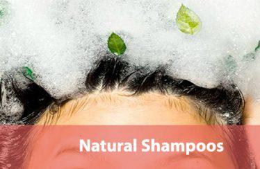 Natural-Shampoos