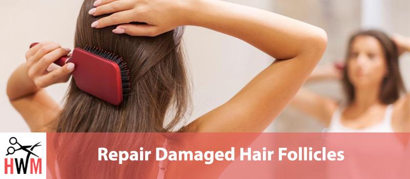 Ultimate Guide to Repair Damaged Hair Follicles